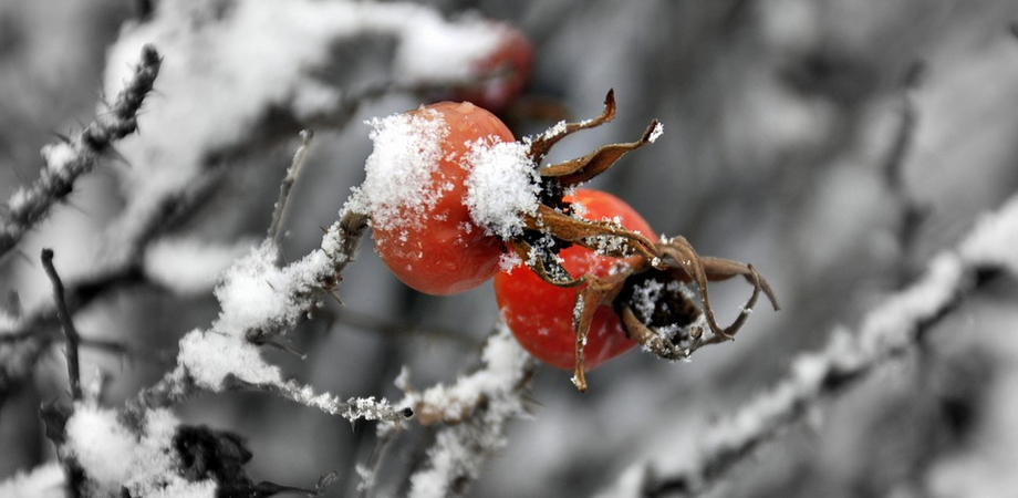 Meteo, il Natale porterà la neve in Sicilia: temperature giù anche di 12 gradi