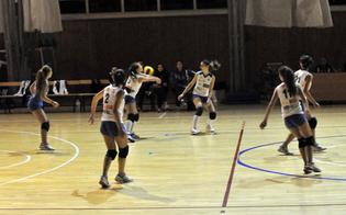http://www.seguonews.it/san-cataldo-due-sconfitte-la-nike-torna-vincere-agguanta-terzo-posto
