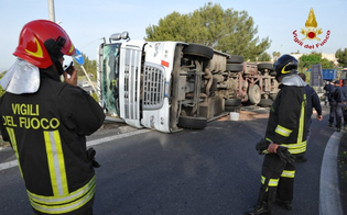 http://www.seguonews.it/autocarro-si-ribalta-alle-porte-di-santa-caterina-miracolosamente-illesi-i-due-occupanti