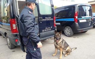 https://www.seguonews.it/caltanissetta-entra-carcere-la-droga-bocca-passarla-al-marito-arrestata