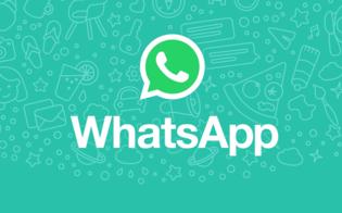 https://www.seguonews.it/whatsapp-arrivano-i-messaggi-offline-si-potranno-inviare-senza-la-connessione
