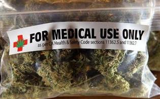 https://www.seguonews.it/cannabis-terapeutica-passo-avanti-allars-movimento-cinque-stelle-subito-tavolo-tecnico
