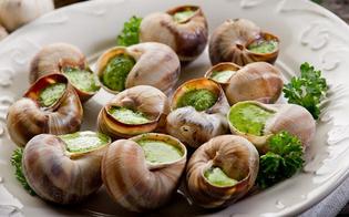 http://www.seguonews.it/dalla-tavola-alla-cosmesi-cresce-del-325-consumo-lumache-parte-degli-italiani