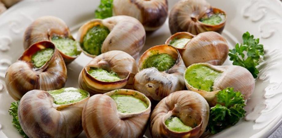 Dalla tavola alla cosmesi: cresce del 325% il consumo di lumache da parte degli italiani