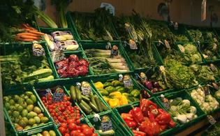 https://www.seguonews.it/maltempo-ortofrutta-crisi-scaffali-vuoti-prezzi-alle-stelle-zucchine-insalate