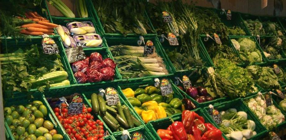 Maltempo, ortofrutta in crisi: scaffali vuoti e prezzi alle stelle per zucchine e insalate
