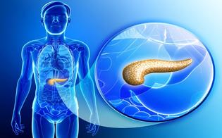 https://www.seguonews.it/tumore-al-pancreas-studiosi-statunitensi-verso-esame-la-diagnosi-precoce