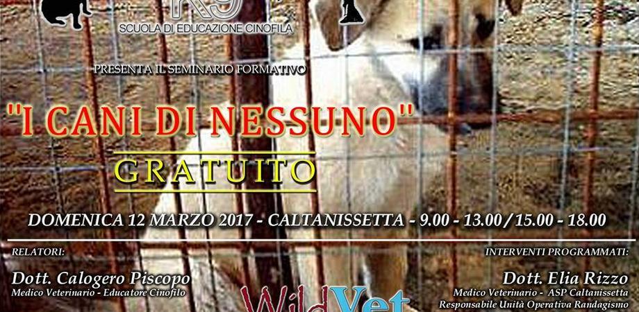 """Caltanissetta, """"I cani di nessuno"""", un seminario gratuito per approfondire norme e gestione"""