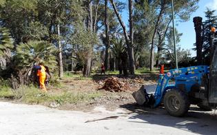 https://www.seguonews.it/caltanissetta-lavori-al-parco-dubini-entro-un-mese-restituito-alla-citta