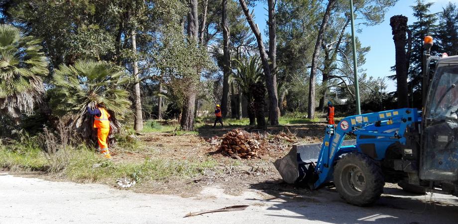 Caltanissetta, lavori al parco Dubini: entro un mese potrebbe essere restituito alla città