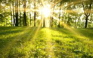 Vitamina D: per fare il pieno in primavera bastano 10 minuti al sole, in inverno fino a 2 ore