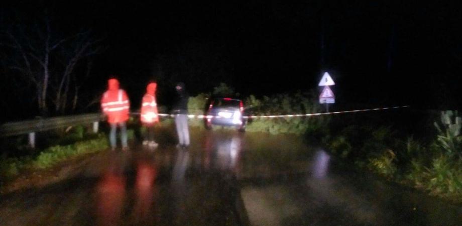 Caltanissetta, maltempo: sulla Sp1 albero cade su un'auto. Conducente vivo per miracolo