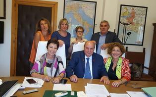 http://www.seguonews.it/giornata-nazionale-della-donna-campagna-di-screening-in-75-farmacie-della-provincia