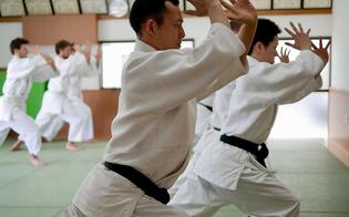 http://www.seguonews.it/arti-marziali-a-caltanissetta-delegazione-di-maestri-giapponesi