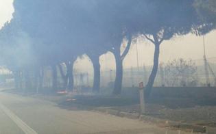 Incendio sulla A19 Palermo-Catania: traffico temporaneamente bloccato
