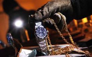 http://www.seguonews.it/caltanissetta-furto-in-una-villetta-di-contrada-gulfi-ladri-portano-via-i-gioielli-e-un-fucile