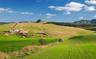 Area vasta delle zone interne delle Sicilia: a Caltanissetta un incontro