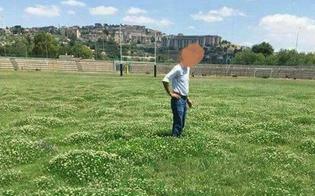 http://www.seguonews.it/caltanissetta-lassessore-campione-sullo-stadio-tomaselli-foto-sui-social-non-vera