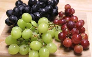 Nuova scoperta: l'estratto di uva potrebbe proteggere dal tumore al colon
