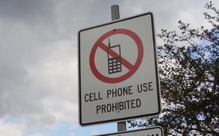 http://www.seguonews.it/hawai-cellulari-illegali-per-i-pedoni-che-attraversano-la-strada