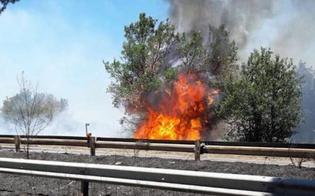 https://www.seguonews.it/la-sicilia-continua-a-bruciare-traffico-bloccato-sullautostrada-nei-pressi-di-agira