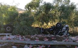 Autostrada A19: tir travolge auto sulla corsia d'emergenza e finisce in una scarpata