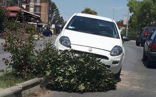 Caltanissetta, anziano perde il controllo dell'auto e finisce sullo spartitraffico