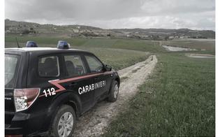 https://www.seguonews.it/resuttano-ruba-90-balle-di-fieno-e-si-da-alla-fuga-sulla-a19-arrestato