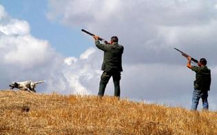 https://www.seguonews.it/da-domani-in-sicilia-si-torna-a-cacciare-il-wwf-oltre-25-mila-fucili-si-divertiranno-a-scaricare-piombo-mortale-su-27-specie