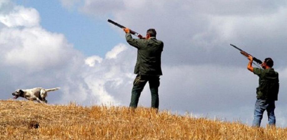 """Da domani in Sicilia si torna a cacciare, il Wwf: """"Oltre 25 mila fucili si divertiranno a scaricare piombo mortale su 27 specie"""""""