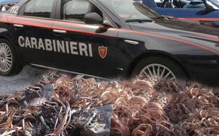 http://www.seguonews.it/gela-ruba-un-chilometro-di-cavi-di-rame-e-fugge-alla-vista-dei-carabinieri-29enne-arrestato