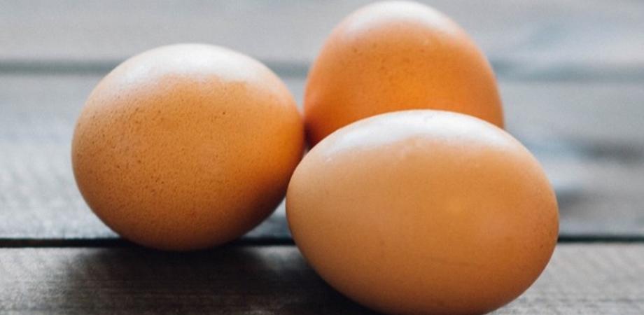 I cibi intelligenti delle feste in attesa del cenone: pranzo leggero con finocchi, uova e cicoria