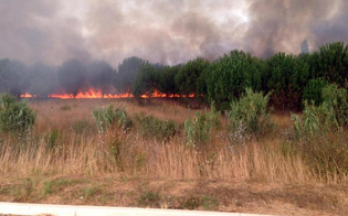 http://www.seguonews.it/ragusa-indagati-vigili-del-fuoco-ausiliari-appiccavano-incendi-per-10-euro-lora