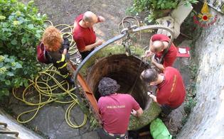http://www.seguonews.it/tragedia-a-santa-caterina-cade-in-un-pozzo-mentre-raccoglie-frutta-muore-79enne