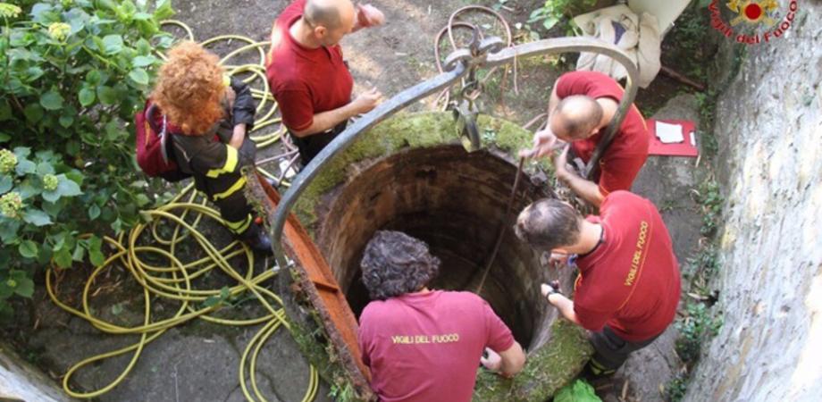 Tragedia a Santa Caterina, cade in un pozzo mentre raccoglie frutta: muore 79enne