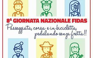 http://www.seguonews.it/caltanissetta-domenica-si-corre-e-si-pedala-per-lviii-giornata-nazionale-fidas