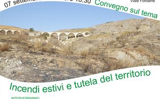 http://www.seguonews.it/incendi-estivi-e-tutela-del-territorio-a-sommatino-un-convegno-su-lotta-e-prevenzione-del-fenomeno