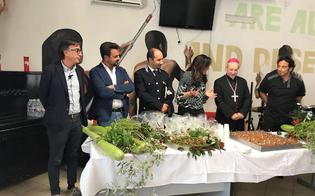 http://www.seguonews.it/coltiviamo-la-vita-allipm-di-caltanissetta-il-vescovo-benedice-lorto-urbano