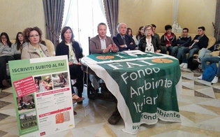 http://www.seguonews.it/caltanissetta-i-tesori-di-villa-amedeo-illustrati-ai-cittadini-da-fai-e-studenti
