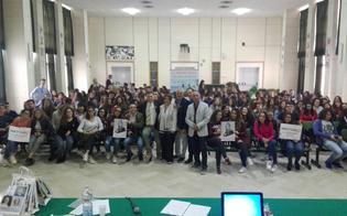 http://www.seguonews.it/campagna-nastro-rosa-lilt-caltanissetta-protagoniste-le-studentesse-del-liceo-ruggero-settimo