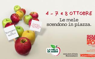 A Caltanissetta e provincia