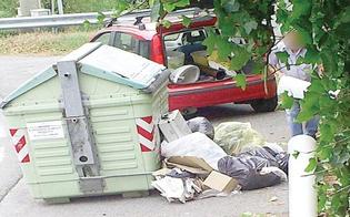 http://www.seguonews.it/rifiuti-gettati-in-orari-non-consentiti-multe-per-11-nisseni
