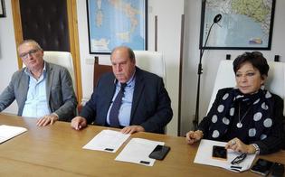 http://www.seguonews.it/concorsi-per-primari-allasp-di-caltanissetta-sorteggiate-le-commissioni-esaminatrici