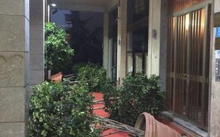 http://www.seguonews.it/caltanissetta-vandali-in-viale-conte-testasecca-distruggono-le-piante
