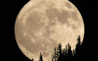 http://www.seguonews.it/e-la-notte-della-superluna-la-piu-grande-e-luminosa-dellanno