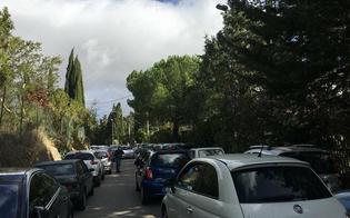 http://www.seguonews.it/caos-parcheggi-allospedale-santelia-le-proposte-di-associazioni-e-consiglieri-comunali