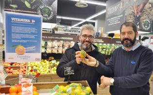 http://www.seguonews.it/in-sicilia-con-la-bio-shopper-si-promuove-la-filiera-agricola