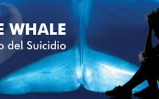 http://www.seguonews.it/anno-giudiziario-a-caltanissetta-fra-i-giovani-si-diffonde-il-blue-whale-e-con-esso-i-tentativi-di-suicidio-i-minori-di-gela-arruolati-dalle-cosche