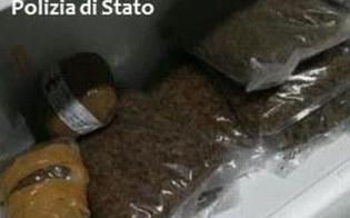http://www.seguonews.it/ritrovati-in-una-scuola-di-catania-oltre-140-chili-di-droga-fra-gli-arrestati-ce-un-bidello