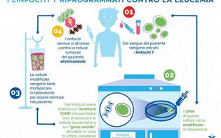 http://www.seguonews.it/roma-bimbo-trattato-con-cellule-riprogrammate-guarisce-dalla-leucemia